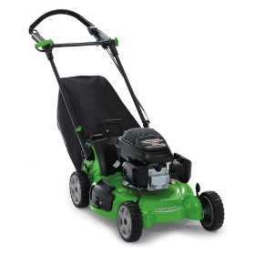 lawn boy insight platinum series  propelled lawn mower